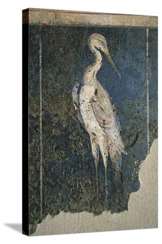 Flamingo in a Swamp from the House of Love and Pan--Stretched Canvas Print