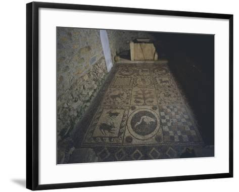 Imperial-Age Roman Mosaic with Geometric and Zoomorphic Images--Framed Art Print