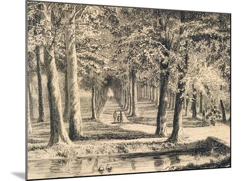 The Avenue of Plane Trees in Battaglia Terme--Mounted Giclee Print