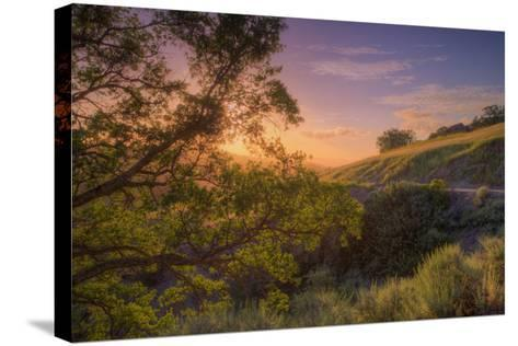 Last Light at Mount Diablo, Northern California-Vincent James-Stretched Canvas Print