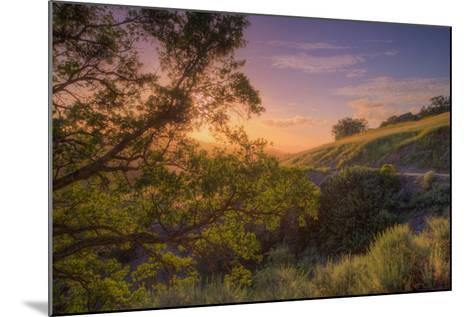 Last Light at Mount Diablo, Northern California-Vincent James-Mounted Photographic Print