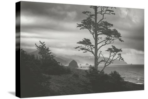 Blustery Morning View From Ecola Point, Oregon Coast-Vincent James-Stretched Canvas Print