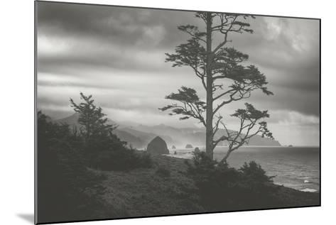 Blustery Morning View From Ecola Point, Oregon Coast-Vincent James-Mounted Photographic Print