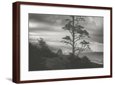 Blustery Morning View From Ecola Point, Oregon Coast-Vincent James-Framed Art Print