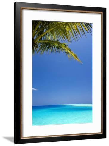 Shades of Blue and Palm Tree, Tropical Beach, Maldives, Indian Ocean, Asia-Sakis-Framed Art Print