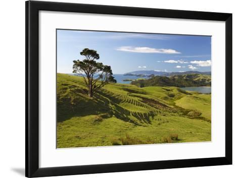 Coastline Looking North Towards Coromandel and Hauraki Gulf-Stuart-Framed Art Print