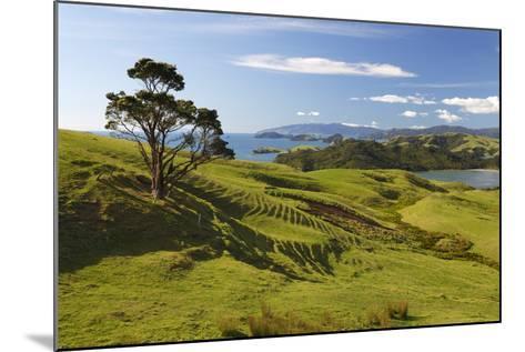 Coastline Looking North Towards Coromandel and Hauraki Gulf-Stuart-Mounted Photographic Print