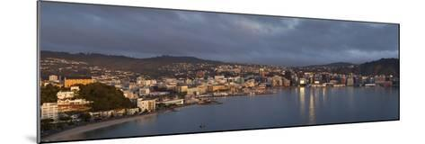 Panorama of Wellington City and Harbour-Nick Servian-Mounted Photographic Print