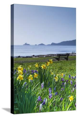 Mumbles, Swansea, Wales, United Kingdom, Europe-Billy-Stretched Canvas Print