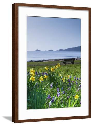Mumbles, Swansea, Wales, United Kingdom, Europe-Billy-Framed Art Print