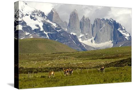 Torres Del Paine-Tony-Stretched Canvas Print