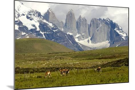 Torres Del Paine-Tony-Mounted Photographic Print