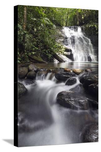 Ula Temburong National Park, Brunei, Borneo, Southeast Asia-Christian-Stretched Canvas Print
