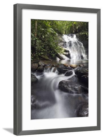 Ula Temburong National Park, Brunei, Borneo, Southeast Asia-Christian-Framed Art Print