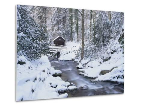 Cottage in a Forest in Winter-Marcus Lange-Metal Print