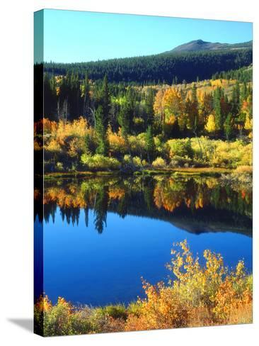 USA, California, Sierra Nevada. Autumn Reflection in a Beaver Pond-Jaynes Gallery-Stretched Canvas Print