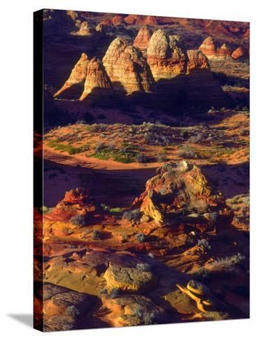 USA, Arizona, Sandstone Formations in the Paria Canyon-Jaynes Gallery-Stretched Canvas Print