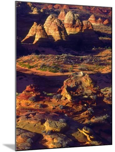 USA, Arizona, Sandstone Formations in the Paria Canyon-Jaynes Gallery-Mounted Photographic Print