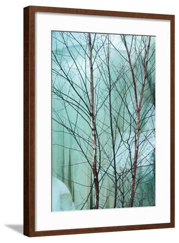 Canada, Ontario, Rabi Lake. White Birch in Front of Frozen Waterfall-Jaynes Gallery-Framed Art Print