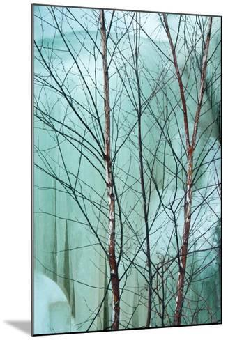 Canada, Ontario, Rabi Lake. White Birch in Front of Frozen Waterfall-Jaynes Gallery-Mounted Photographic Print