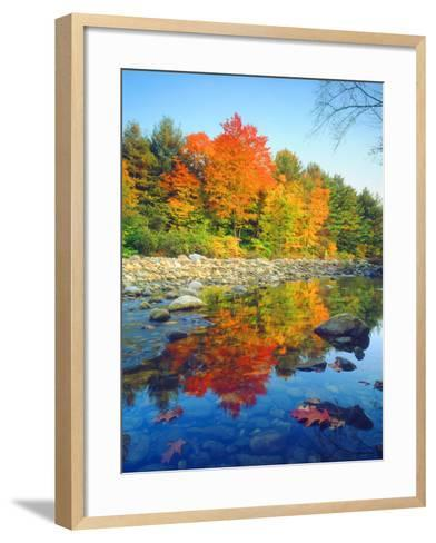 USA, Vermont, Autumn Colors Reflecting in a Stream in Vermont-Jaynes Gallery-Framed Art Print