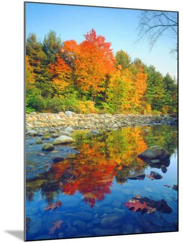 USA, Vermont, Autumn Colors Reflecting in a Stream in Vermont-Jaynes Gallery-Mounted Photographic Print