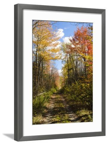 USA, Maine, Bar Harbor. Path in Fall Colors of Red and Gold Foliage-Bill Bachmann-Framed Art Print