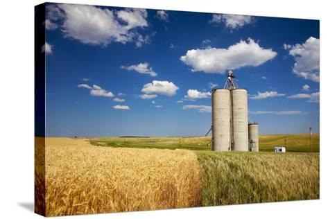 USA, Washington, Davenport. Silos Surrounded by Fields of Wheat-Terry Eggers-Stretched Canvas Print