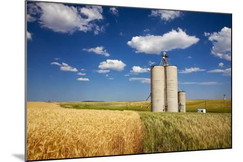 USA, Washington, Davenport. Silos Surrounded by Fields of Wheat-Terry Eggers-Mounted Photographic Print