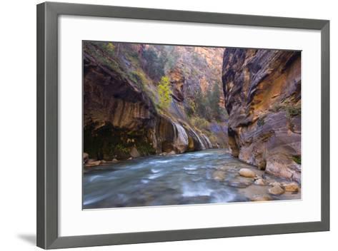 USA, Utah, Zion National Park. the Narrows of the Virgin River-Jamie & Judy Wild-Framed Art Print