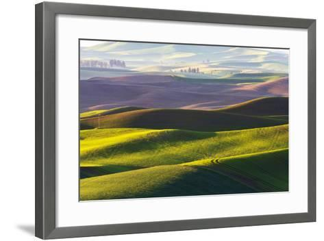 USA, Washington, Palouse. Rolling Hills Covered by Fields of Peas-Terry Eggers-Framed Art Print