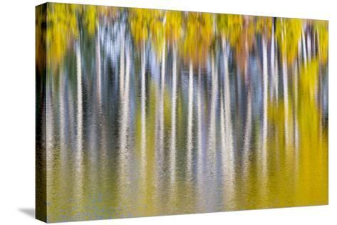 Reflections of Fall II-Kathy Mahan-Stretched Canvas Print