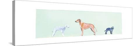 Dogs Panel I-Debbie Nicholas-Stretched Canvas Print