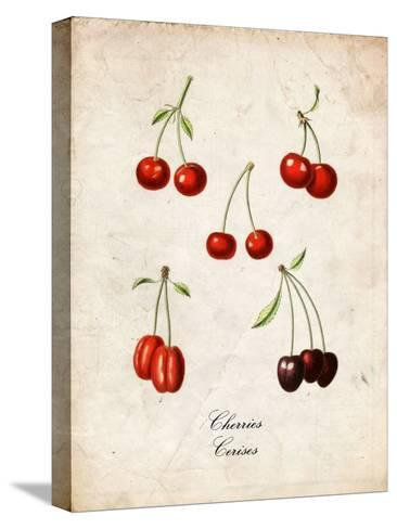 Cherries--Stretched Canvas Print