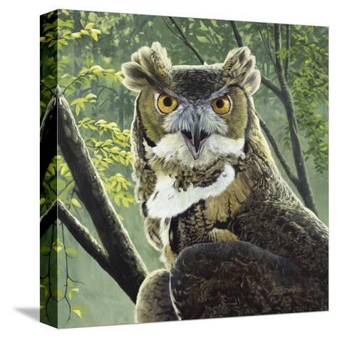 Great Horned Owl-Fred Szatkowski-Stretched Canvas Print