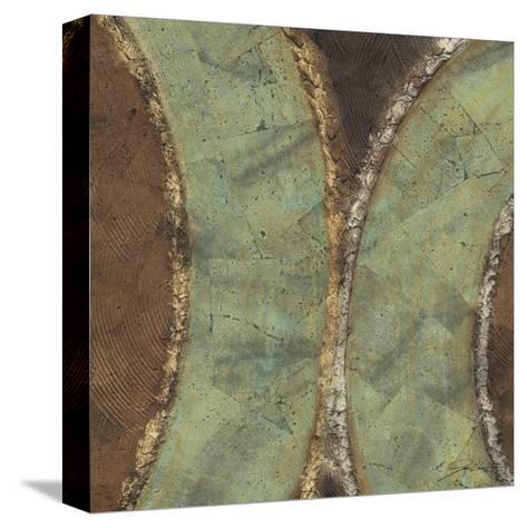 Pathways I-Jason Higby-Stretched Canvas Print