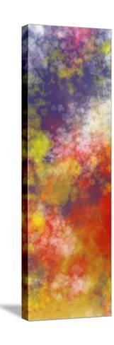 Vapor I. A-Jason Johnson-Stretched Canvas Print
