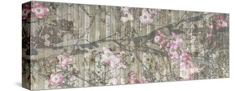 Dogwood Dance II-Jennifer Goldberger-Stretched Canvas Print