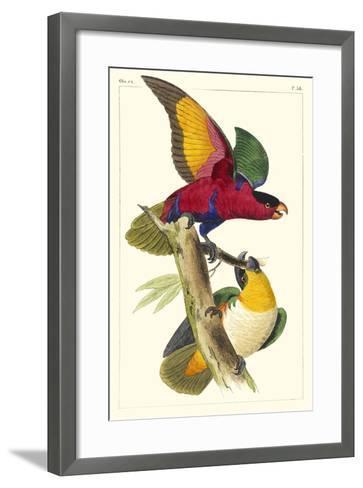 Lemaire Parrots I-C.L. Lemaire-Framed Art Print