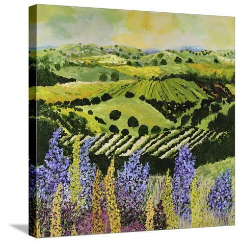 Wildflower Ridge-Allan Friedlander-Stretched Canvas Print