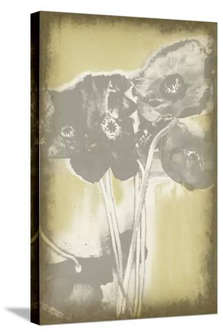 Poppies in Relief II-Jennifer Goldberger-Stretched Canvas Print