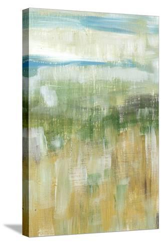 Meadow Memory II-Lisa Choate-Stretched Canvas Print
