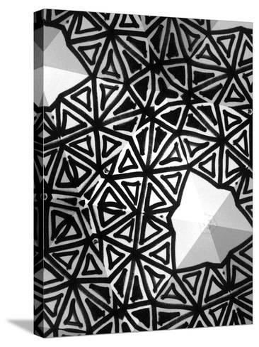 Buckminster I-Renee W^ Stramel-Stretched Canvas Print