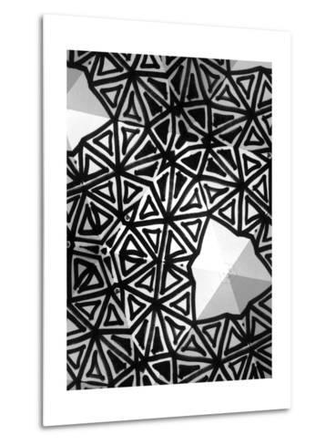 Buckminster I-Renee W^ Stramel-Metal Print