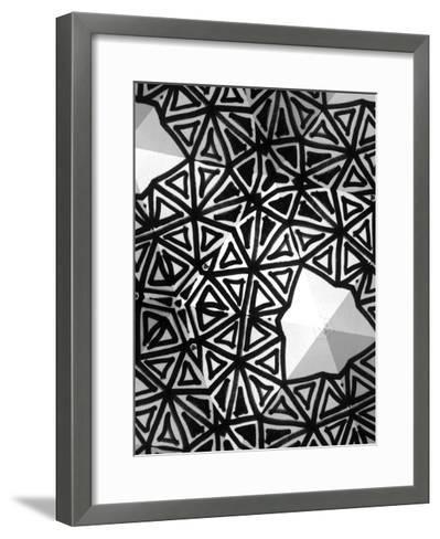 Buckminster I-Renee W^ Stramel-Framed Art Print