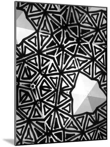 Buckminster I-Renee W^ Stramel-Mounted Art Print