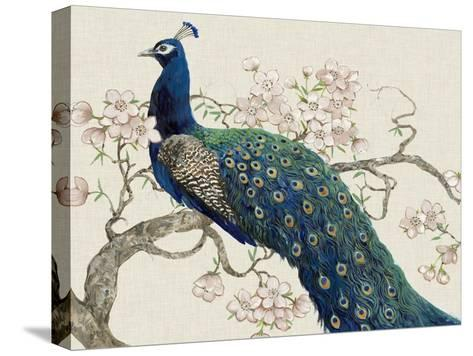 Peacock and Blossoms II-Tim O'toole-Stretched Canvas Print
