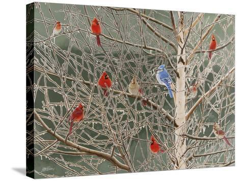 Ornaments-Fred Szatkowski-Stretched Canvas Print
