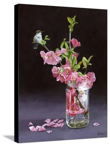 Quince and Ruby I-Fred Szatkowski-Stretched Canvas Print