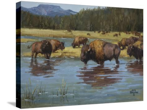 Buffalo Crossing-Jack Sorenson-Stretched Canvas Print